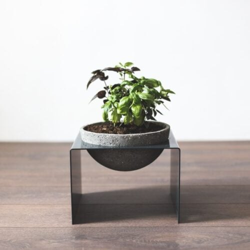 Mažas vazonas STAND & bowl | IDDO
