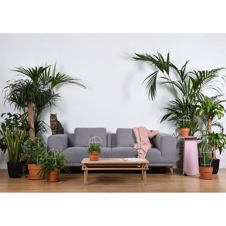 WOOMAR staliukas | ENO Studio